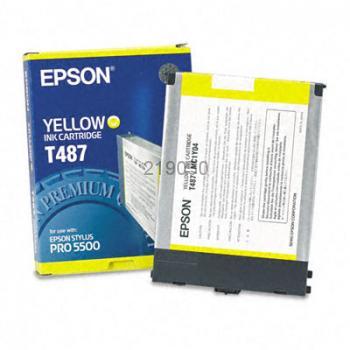 Epson T487011
