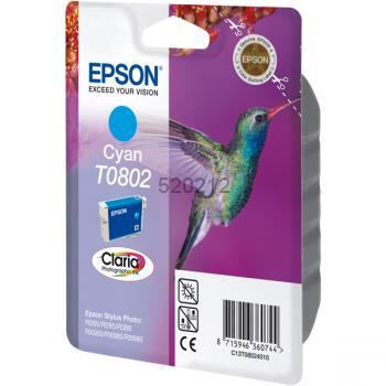 Epson T080240