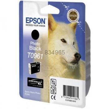 Epson T096140