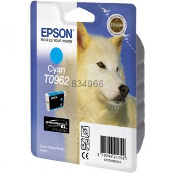 Epson T096240
