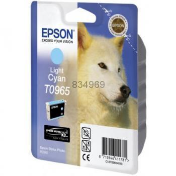 Epson T096540