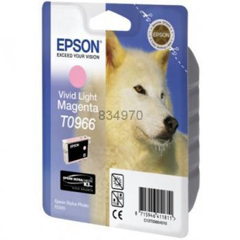 Epson T096640