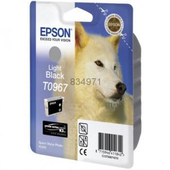 Epson T096740