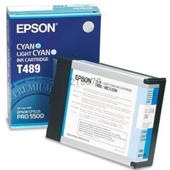 Epson T489011