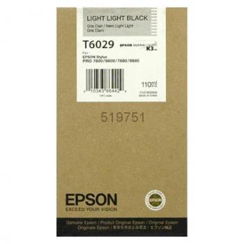 Epson T602900