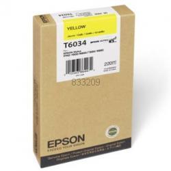 Epson T603400