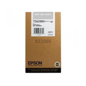 Epson T606900