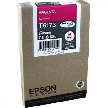 Epson T617300