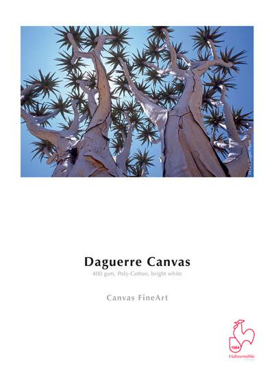 Hahnemuhle (Fine Art papier) DFAR400R24