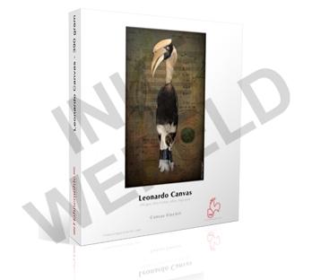 Hahnemuhle (Fine Art papier) DFAR39017G
