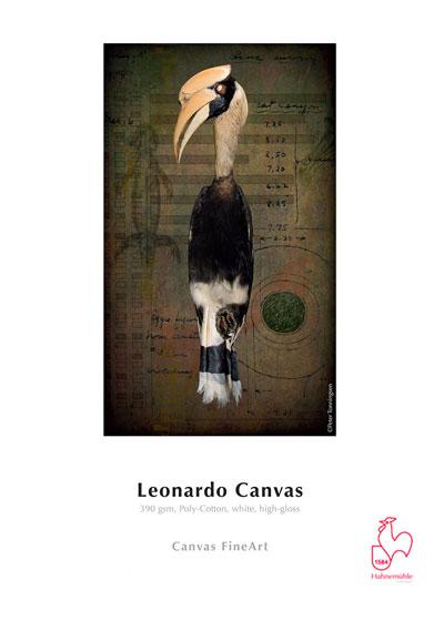 LEONARDO CANVAS